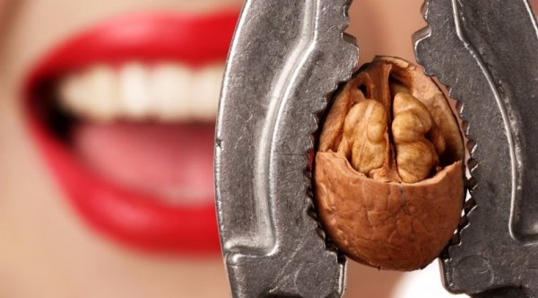 """Результат пошуку зображень за запитом """"грецкие орехи в разбитой скорлупе"""""""